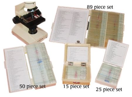 Prepared Microscope Slide Set - 50 pieces