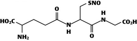 GSNO S-nitrosoglutatione