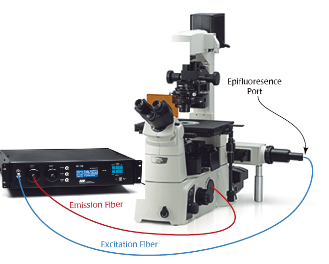 High Intensity LEDs Allow New Applications for the Biofluorometer