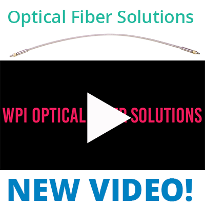 WPI Optical Fiber Solutions for Researchers and Product Developers