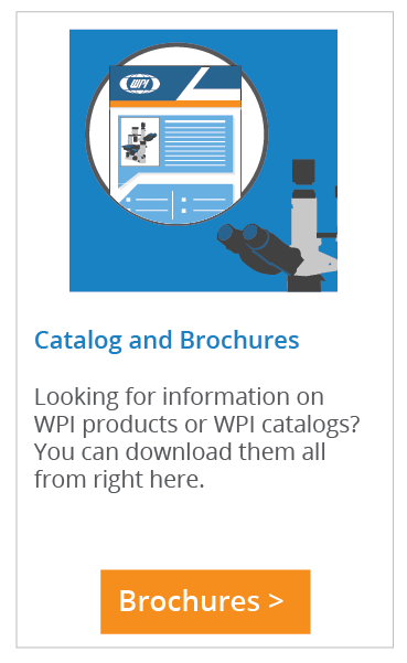Find Catalogs and Brochures