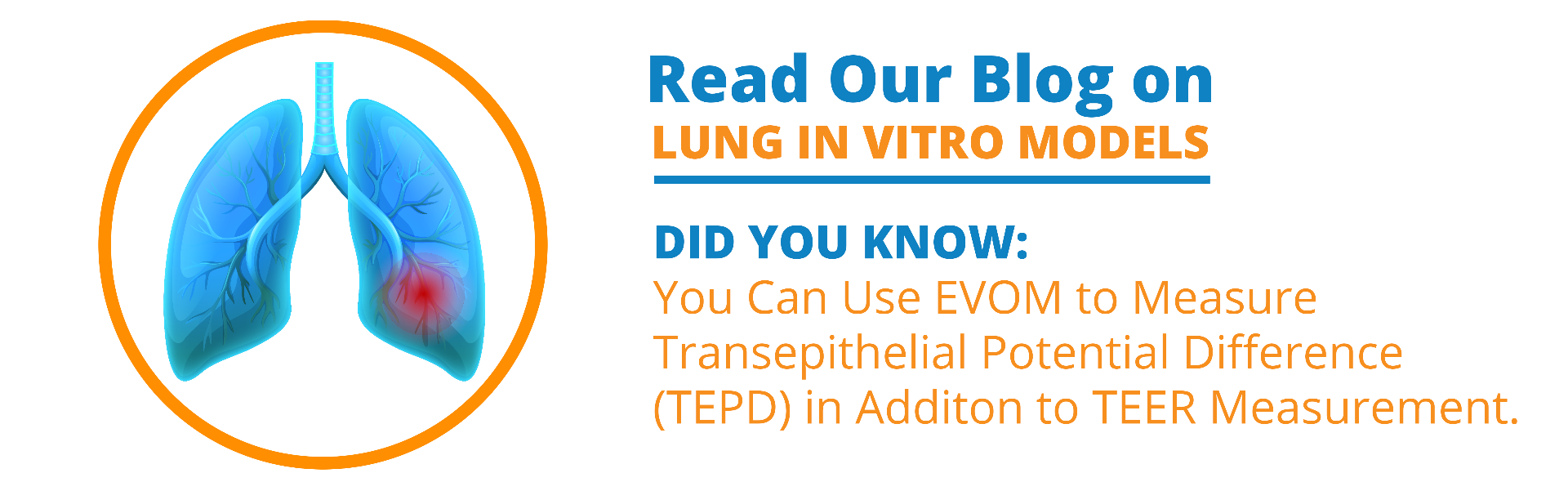 Read our blog on lung in vitro models. Did you know: You can use EVOM to measure transepithelial potential difference (TEPD) in addition to TEER measurement