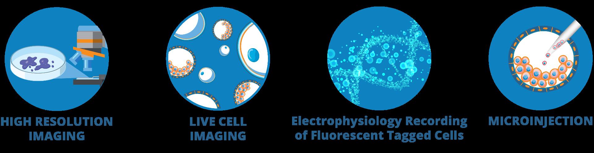 Fluorodish application icons