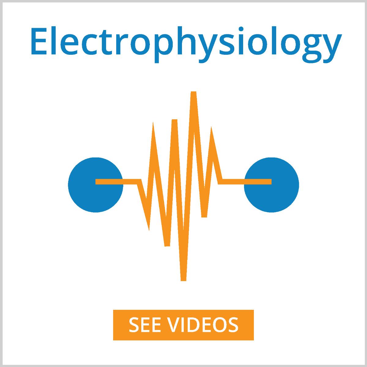 electrophysiology videos