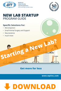 Download the New Lab Startup brochure