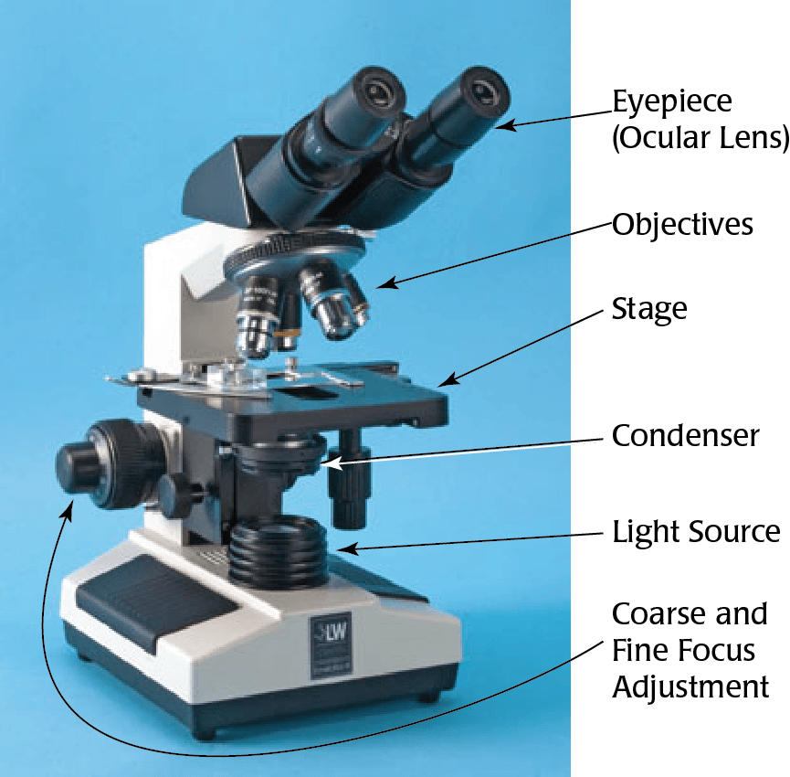Labeled microscope
